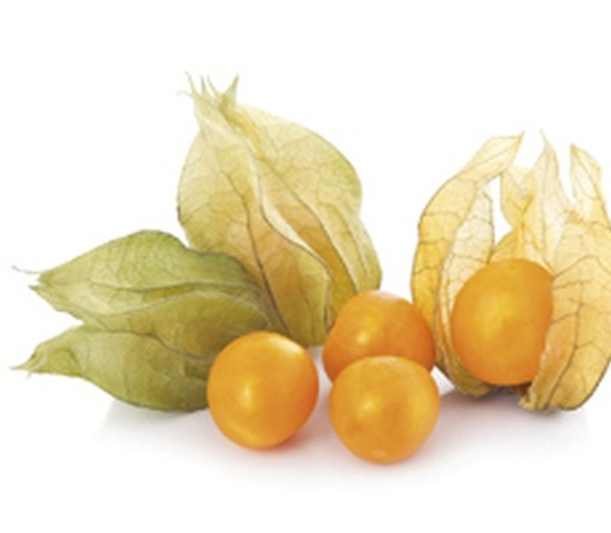 Cape gooseberry (physalis) isolated